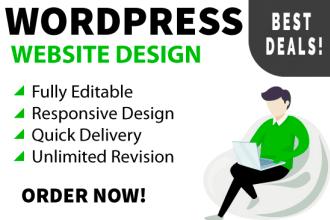 I will create professional wordpress website design