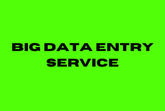 i will do big data entry service