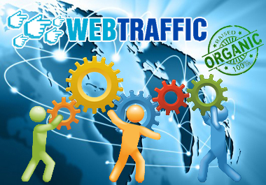 USA 15,000+ Human WEB TRAFFIC Visitors to Your Website