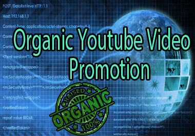 Organic High Quality Youtube Video Promotion through Social Media