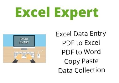 Excel Expert for your business