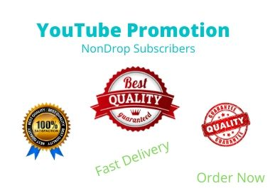 You Will Get Organic YouTube Promotion