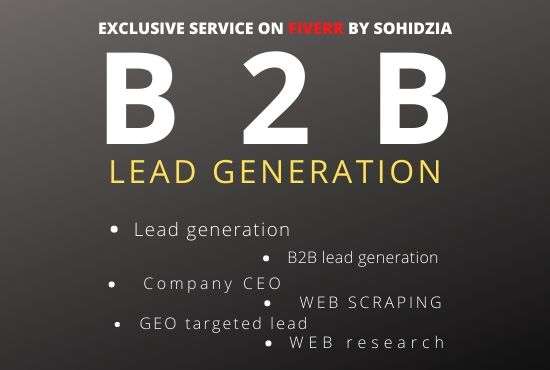 I will perform b2b lead generation and build a targeted email list