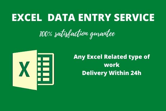 I will do PROFESSIONAL data entry and any excel related type of work in 24 hours