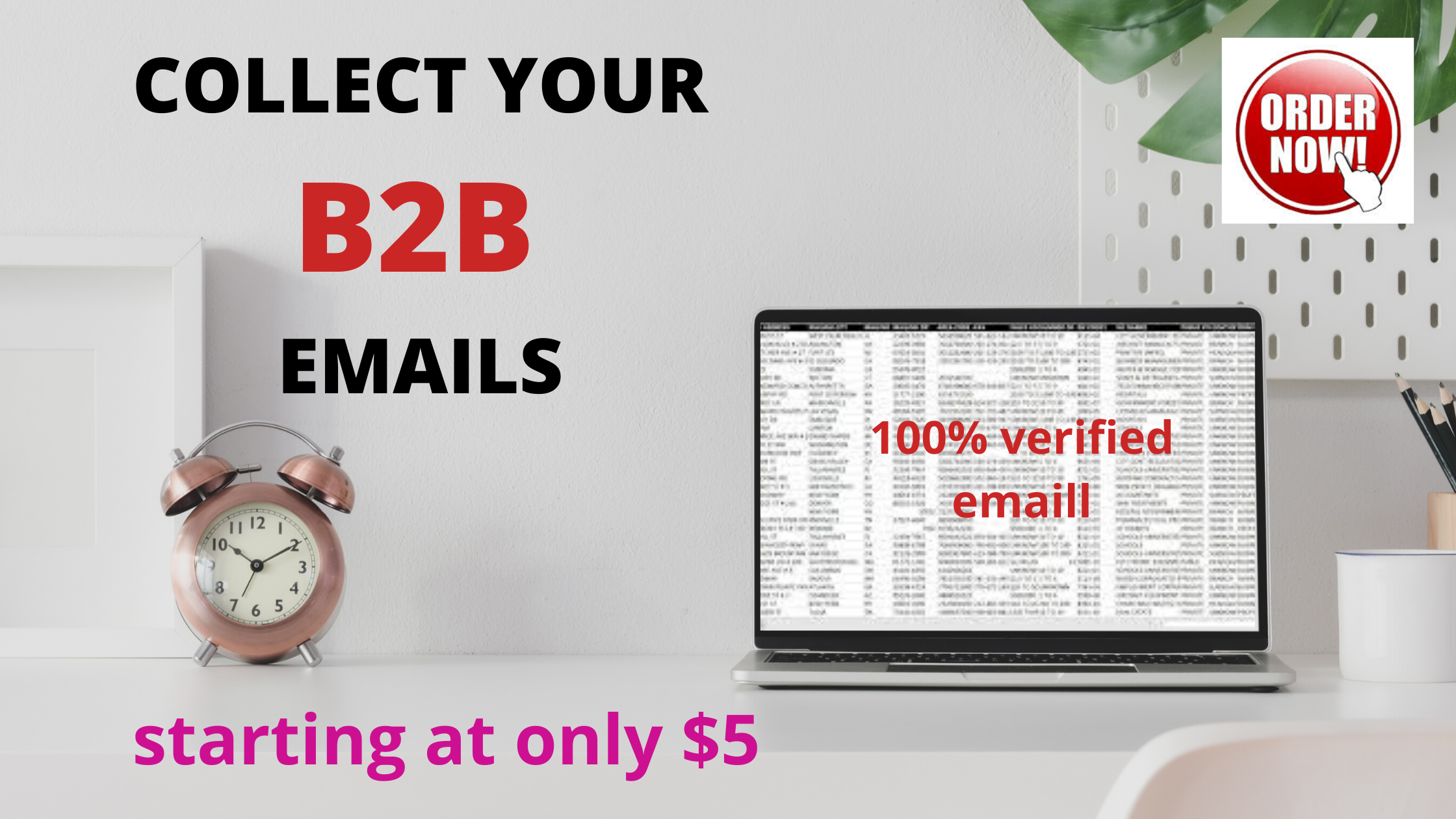 I will find B2B leads for your business