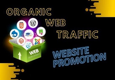 I will drive best USA targeted web traffic inside website