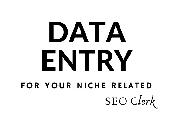 I Can Do Your Any Niche Related Data Entry Job