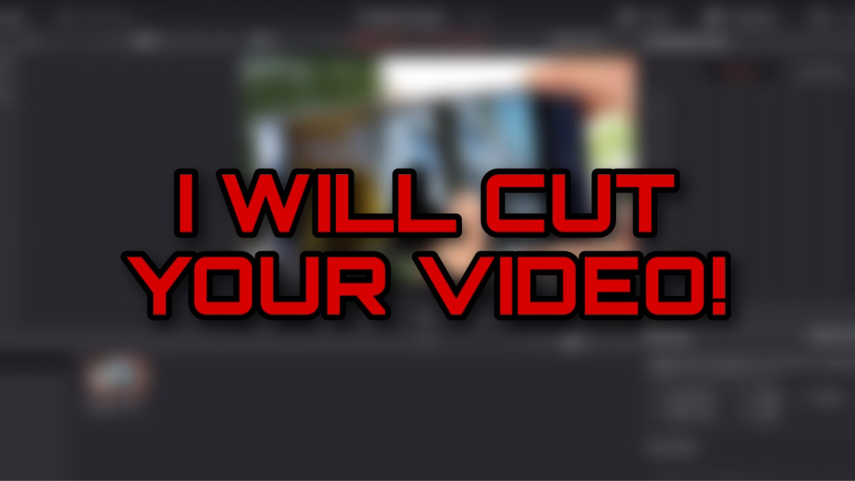 I will edit YOUR video with a professional software