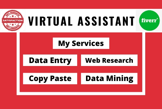 I will be your virtual assistant for any task