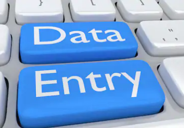 I will do total Data Entry work