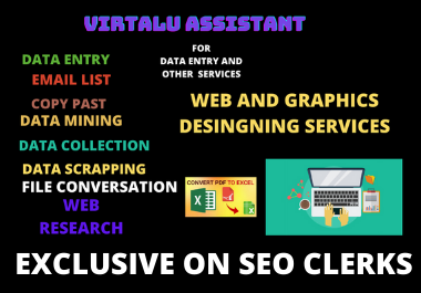 I will provide all kind professional virtual assistant service