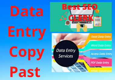 I can do Data Entry Copy Past Work
