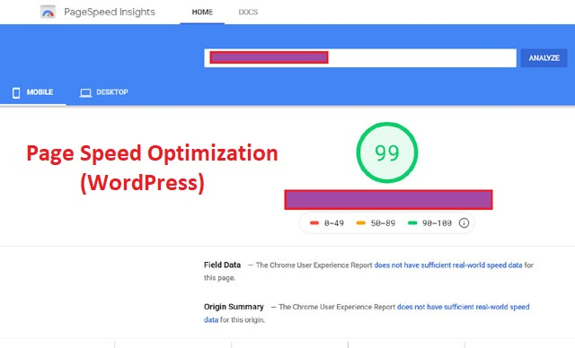 Improve Score on Google Page Speed Insights and GTMetrix - Page Speed Optimization for WordPress