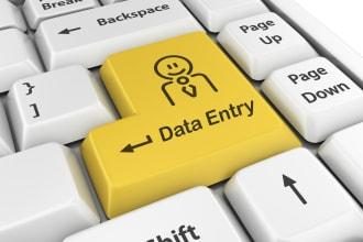 i provide data entry typing, copy paste tasks, offline/online.
