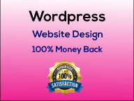 I will create a professional wordpress website design or blog