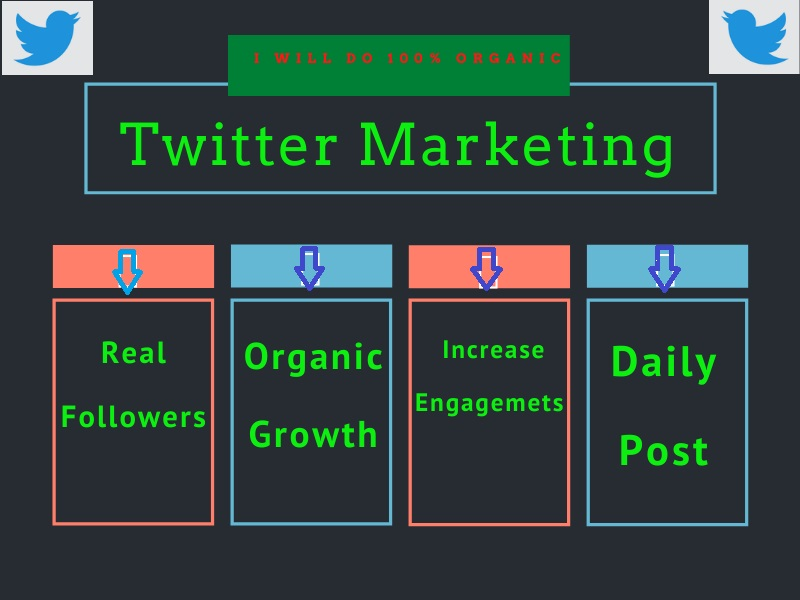 I will do professionally twitter marketing and promotion with growth