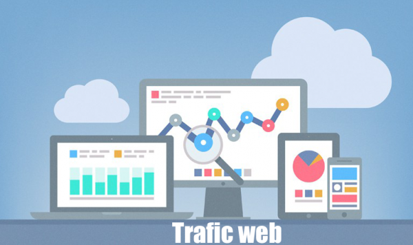 5,000+ REAL Human Being TARGETED Real Website TRAFFIC