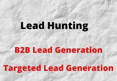 I will do b2b lead generation,  build email list for email marketing