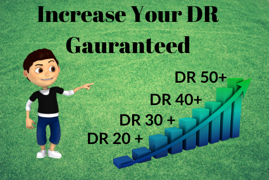 I will increase Your DR DOMAIN RATING in Ahrefs upto 50 plus for 30