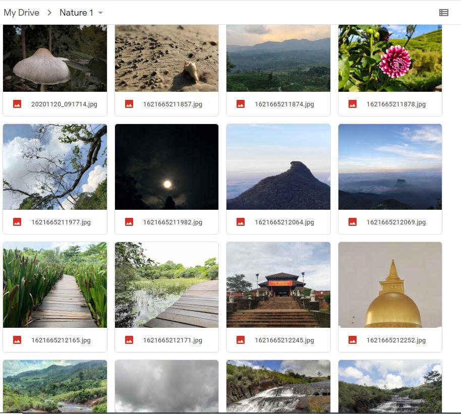 50 high-quality nature Digital photos
