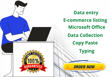 data entry,  data collection and any type of microsoft office