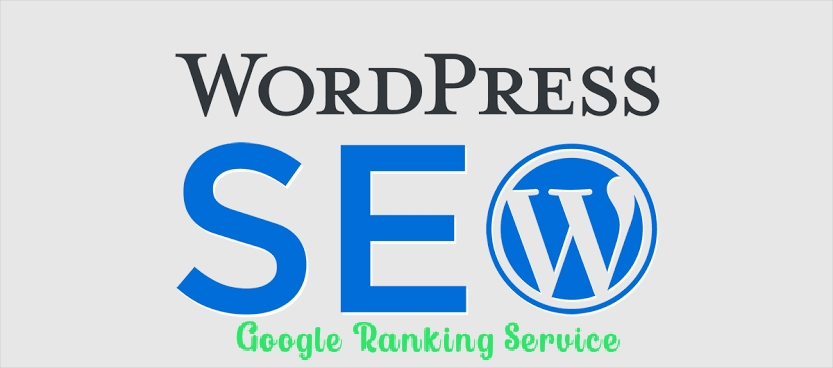 I Will do complete wordpress seo and google ranking service