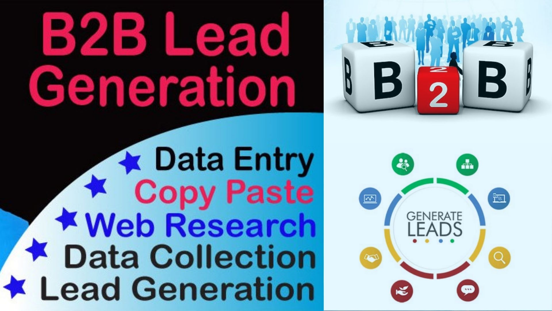 B2B Lead Generation and web Research Professional