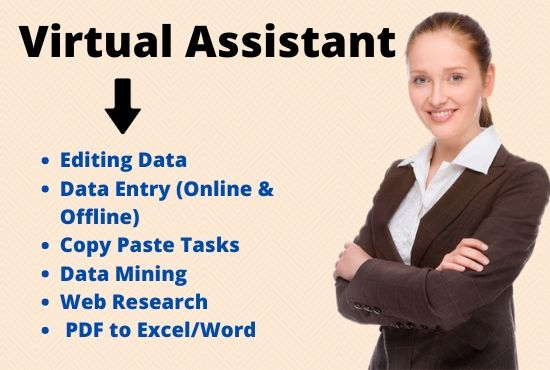I will be your virtual assistant for any type of data entry,  data mining,  web research.