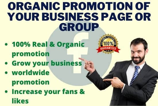 I will do organic promotion of your Facebook page or YouTube