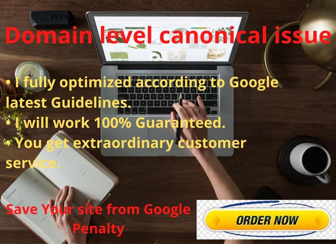 I will do Domain level canonical issue