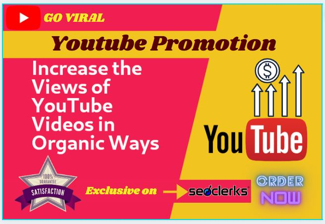 I will do organic youtube promotion of your video to get 1000 audience and Seo backlink