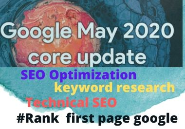 I will seo optimize your WordPress website follow by google update trams and conditions