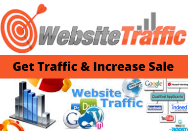 i will bring real visitor,targeted web traffic