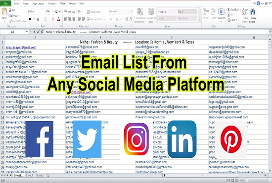 I will provide you niche targeted email list building in 24 hours.