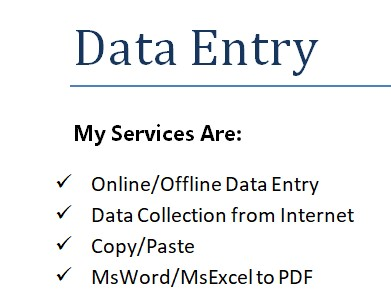 Any Kind of Data Entry in MsWord & MsExcel