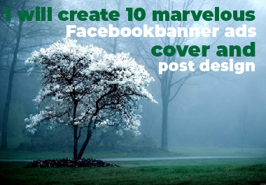 I will create 10 marvelous Facebook banner ads,  cover and post design