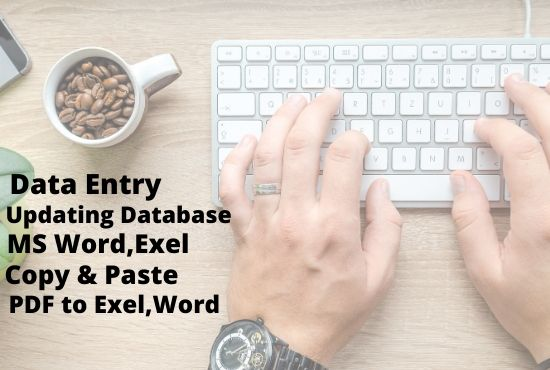I will do accurate data entry ,update data base and copy paste job