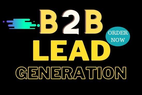 I will do Niche Based B2B Lead Generation