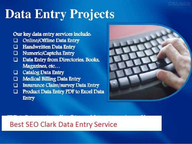 I will do professional typing job,  data entry work,  PDF to word.