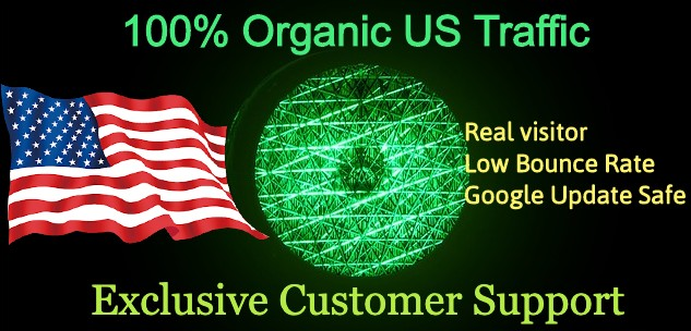 NICHE Targeted real US Web traffic to grow your Business faster