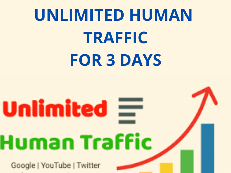 UNLIMITED HUMAN TRAFFIC BY Twitter Google Youtube and many more to web site for 3 days