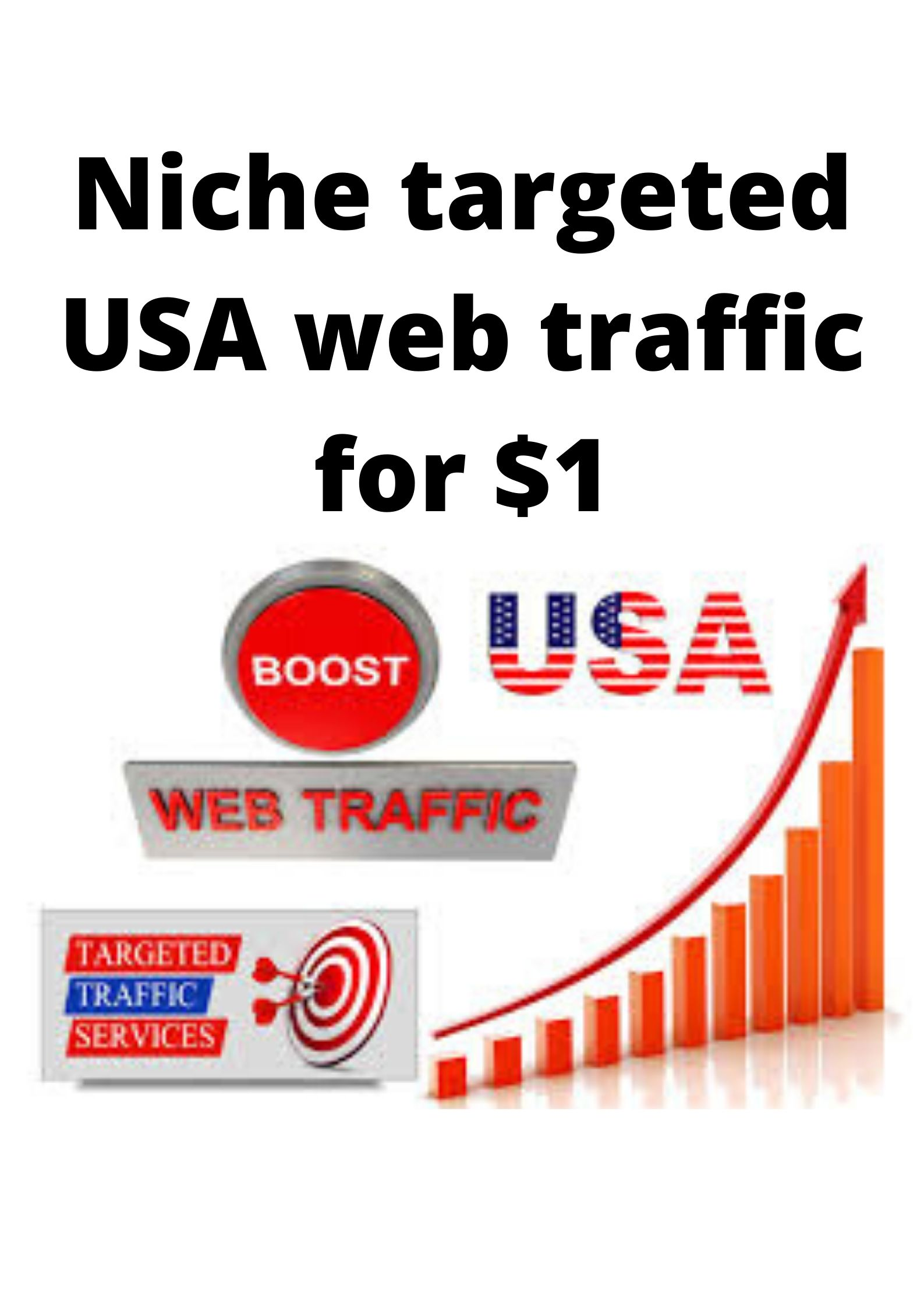 Niche targeted USA web traffic for your website