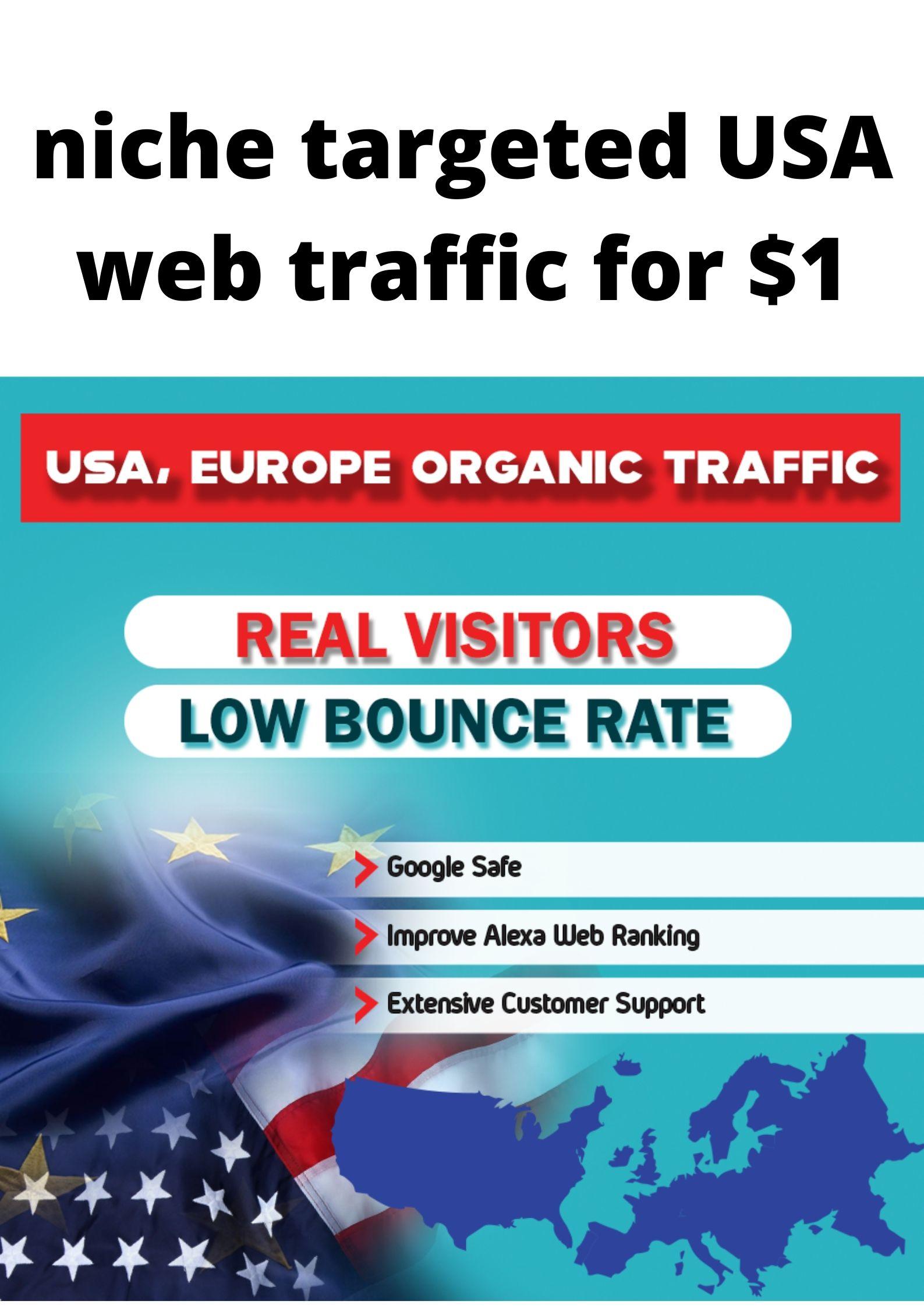niche targeted web traffic in USA