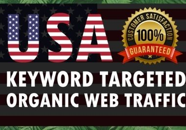Niche Targeted USA Web Traffic with 100 customer satisfaction