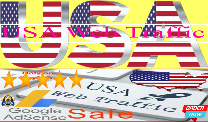 USA web traffic for your website in time