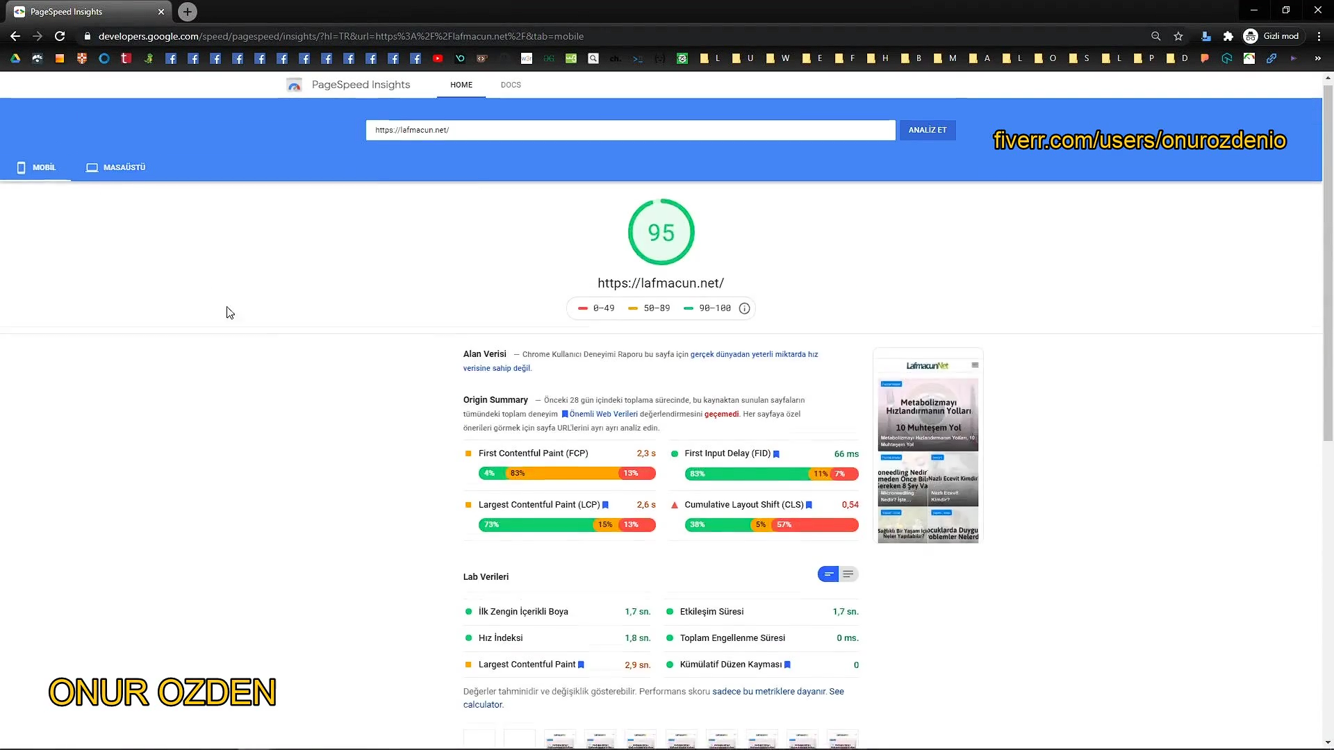 I will optimize wordpress website performance for Google Pagespeed