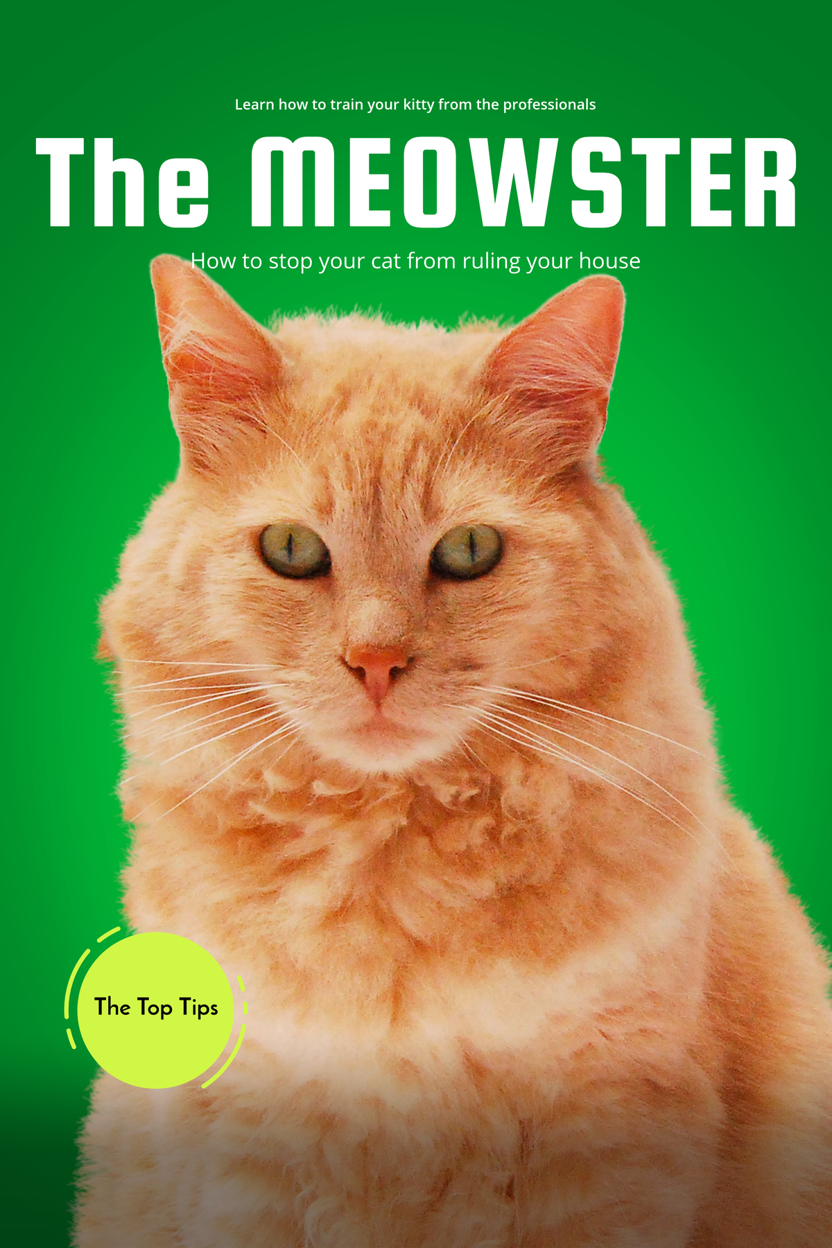 I will make you a professional ebook cover