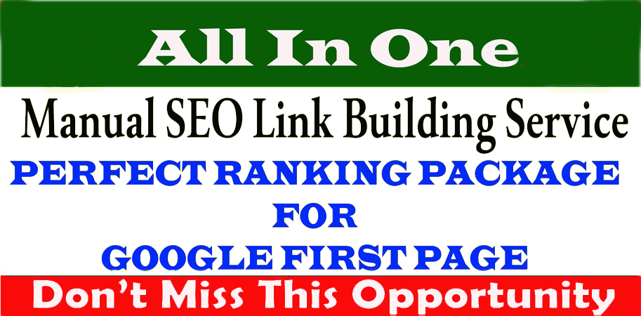ranking your website on google 1st page SEO link building service