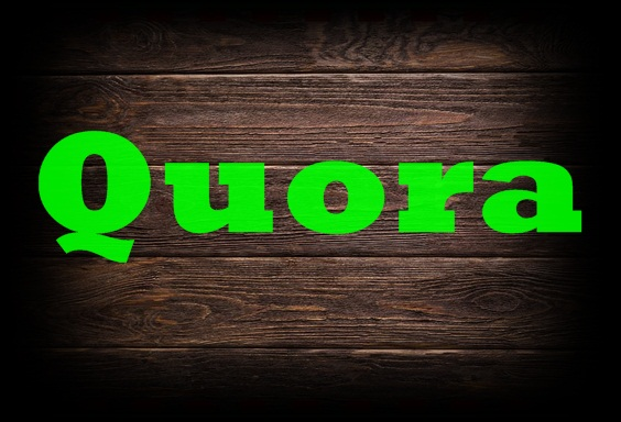 Give you 25 High perfection Quora Answer With Revive URL