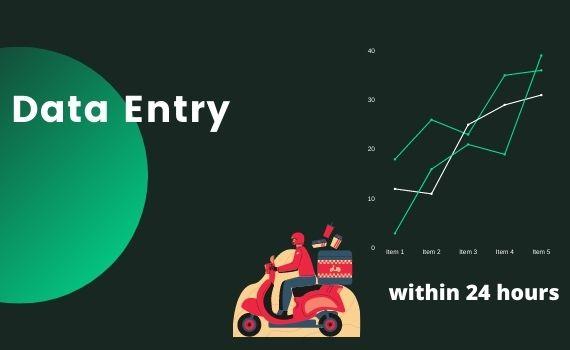 I will provide data entry,copy-paste